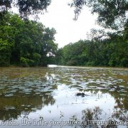 BHAWAL NATIONAL PARK 03