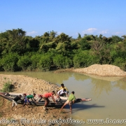 Ratargul Swamp Forest_30