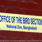 Bangladesh Natinal Zoo_26